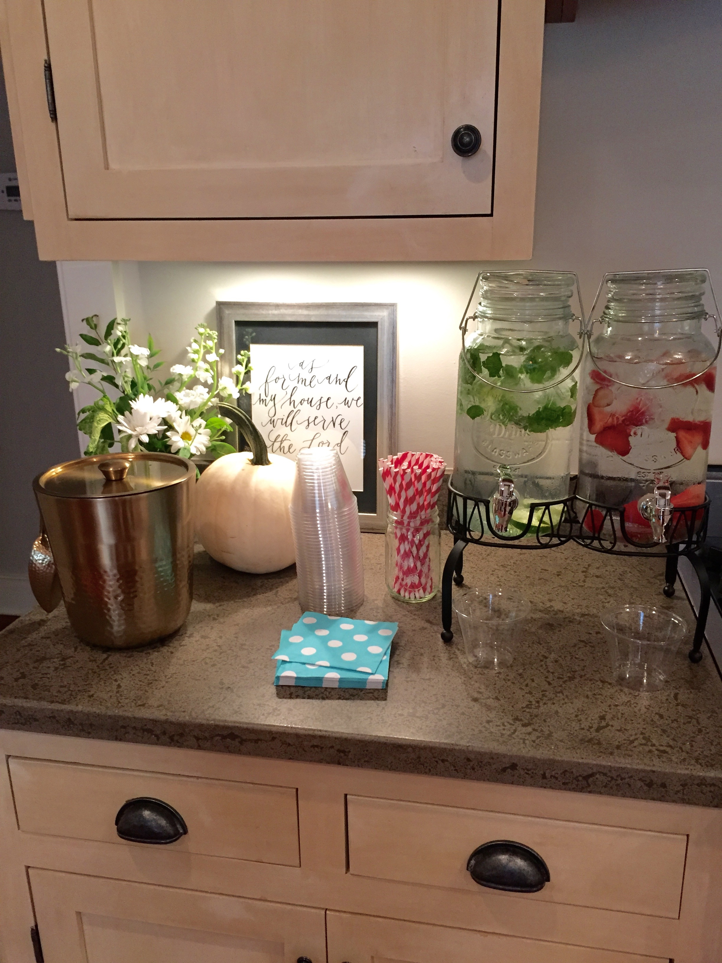 Infused Water Bar Baby Girl Shower Drinks